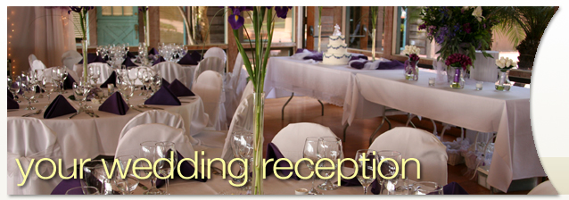 Your Rochester Wedding Reception banner image